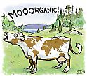 Global Organic Cow