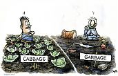 Cabbage garden and garbage garden – chemical contamination
