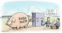 Biogas and economy