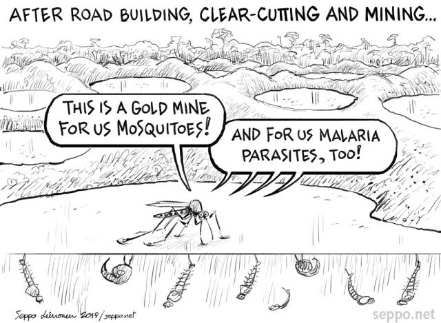 Road building clearcutting mining and malaria