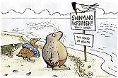 Swimming forbidden