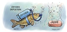 Oxygen depletion in a lake