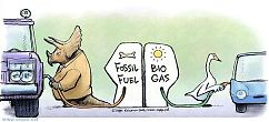 Fossil fuel - Biogas