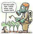 Garden vole and pesticide