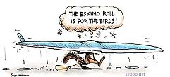 Eskimo roll is for the birds!