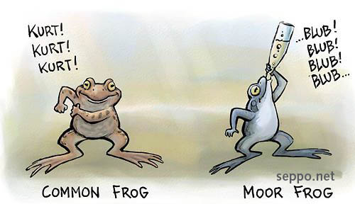 How Common Frog and Moor Frog utter sound