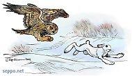 Eagle owl chasing hare