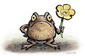 Common Toad and Kingcup