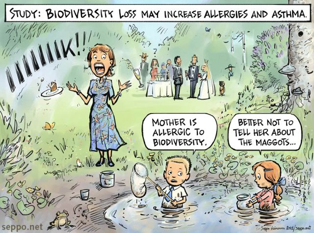 Biodiversity loss may increase allergies