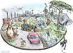 Human activity consumes natural resources