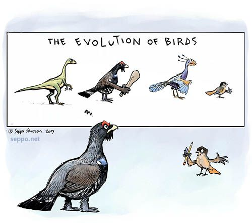 flight psychology of a bird Many bird populations migrate long distances along a flyway the most common  pattern involves flying north in the spring to breed in the temperate or arctic.
