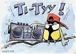 Great Tit with ghetto blaster