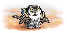 Northern hawk owl migrates