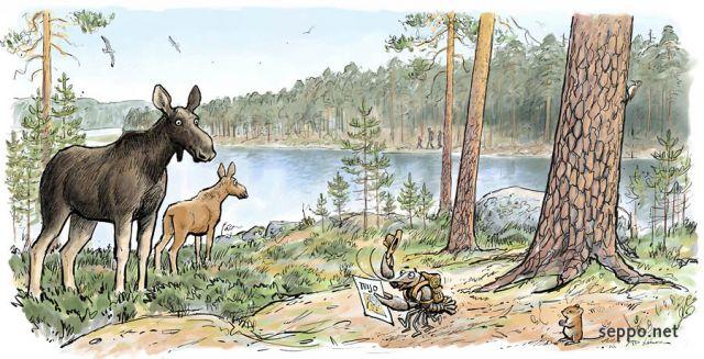 Elk Suomeksi