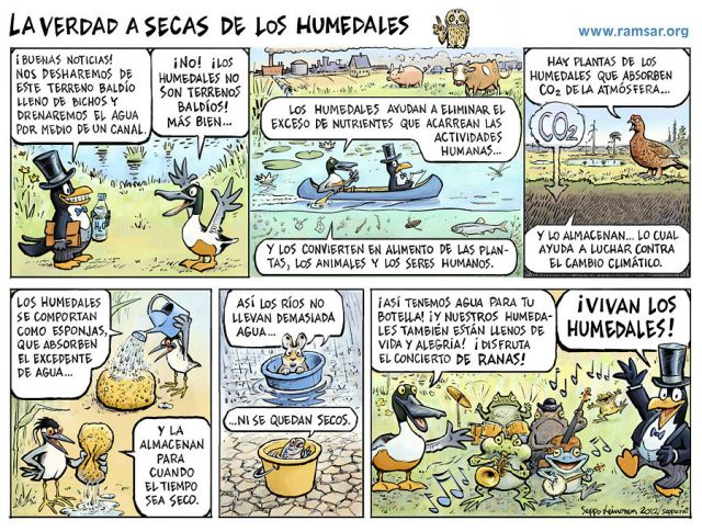 La verdad a secas de los humedales