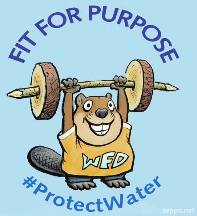 Water framework directive is fit for purpose