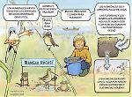Ramsar - humedales y servicios de los ecosistemas