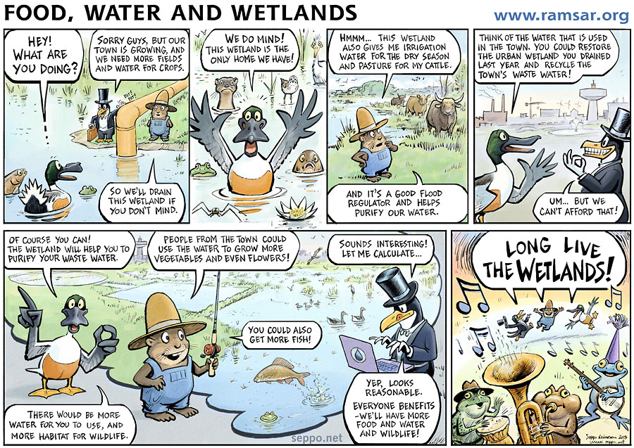 Food water and wetlands