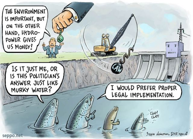 Hydro power companies politicians and water law