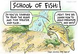 Education - school of fish