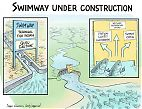 Dam removal swimway and fish passages
