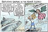 Restoring Salmon in the River Iijoki & the Sinister Environment Minister