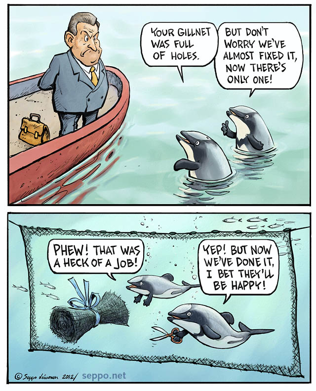 Mammals Maui S Dolphins Helps To Fix The Driftnets
