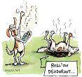 Doggy deodorant