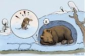Brown Bear and  Pygmy Shrew in winter