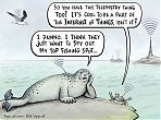 Harbour seal and the internet of things