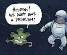 Resistant lichen survives even in space