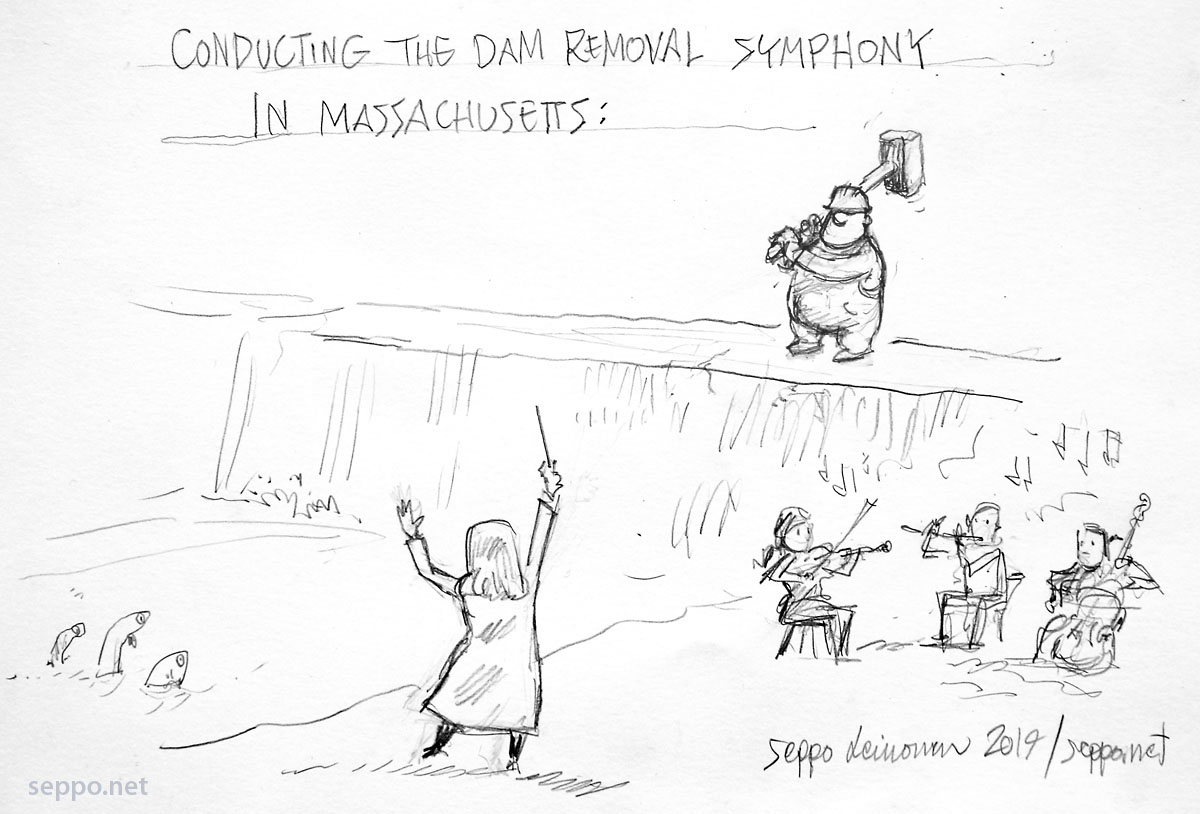 Condacting the dam removal symphony