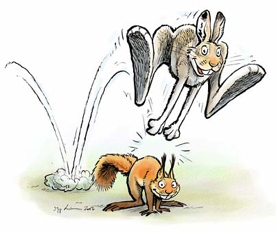 Hare and squirrel