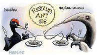 Palokärki ja muurahaiskarhu hyönteisaterialla