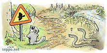 Liito-orava ja nahkiaiset