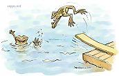 Sammakot uivat