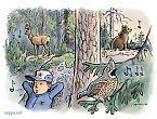 Viestintä metsässä – vihellys