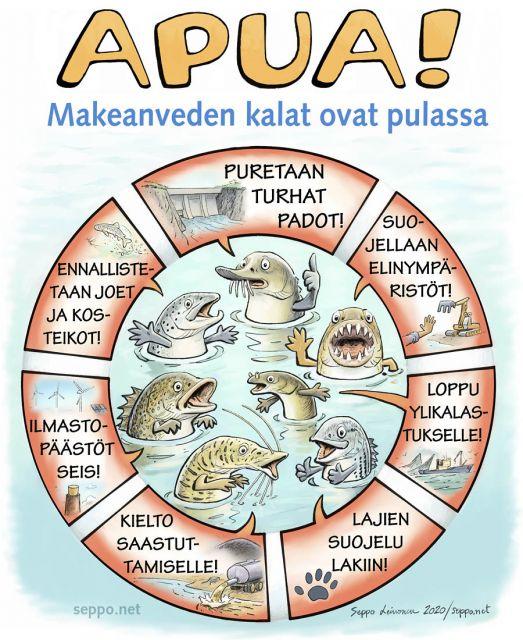 Makeanveden kalat pulassa