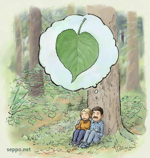 Metsälehmus – rakkauden puu
