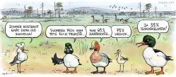 Suomen kosteikot ovat lintujen suosiossa