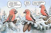 Käpylintukoiraat talvella