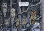 Pöllöt huhuilee