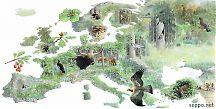 Ennen maataloutta Eurooppa oli metsä