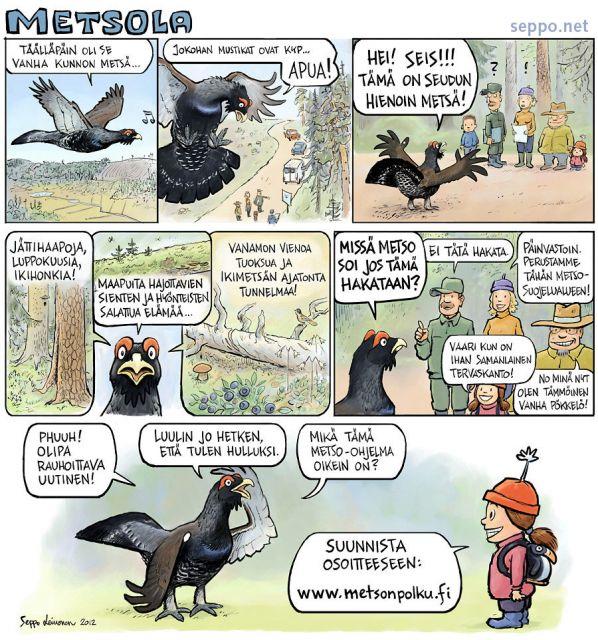 Metso-ohjelma - vapaaehtoinen metsien suojelu