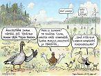 Suon ekosysteemipalvelut