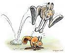 Pukkihyppy - jänis - orava