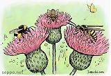 Kimalainen mehiläinen ja ampiainen