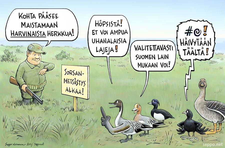 Suomessa saa metsästää uhanalaisia lajeja