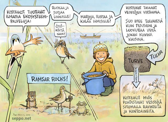 Liminganlahti on tärkeä lintualue ja suojeltu kosteikko