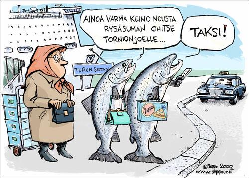 Luonnonlohi nousee kudulle taksilla